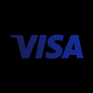 Visa written in blue large letters.