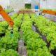 food technology Dubai